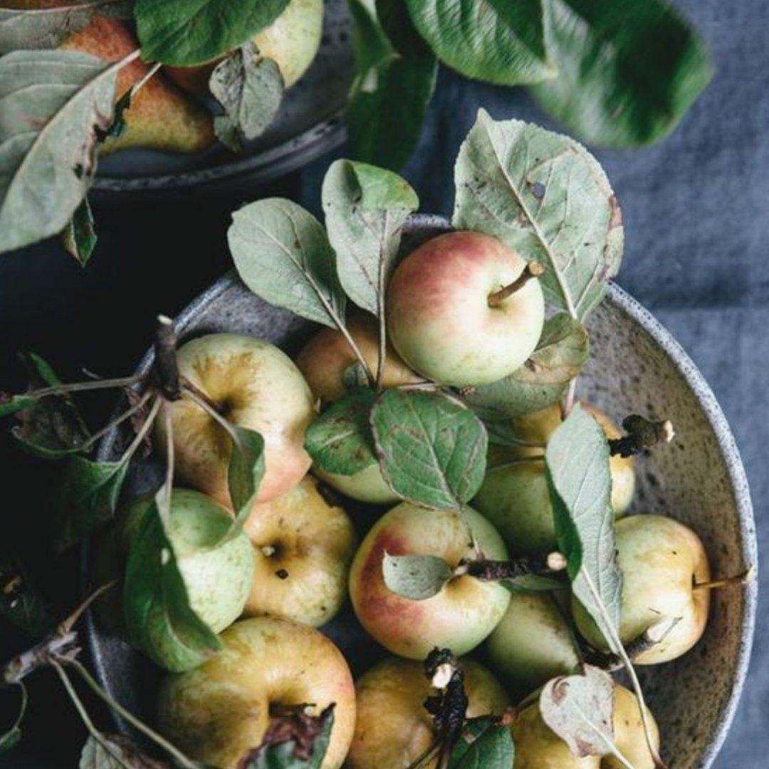 Äpfel Restaurant Brasserie Quinty's De Koog Texel